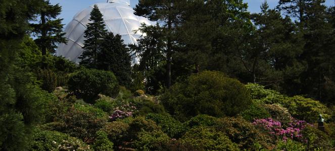 Oplevelser I Botanisk Have